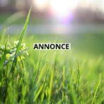 Sådan sikrer du, at din bolig har områdets flotteste græsplæne