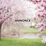 Gør udestuen klar til foråret og sommeren
