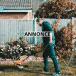 3 måder at opdatere din have på