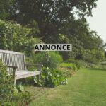 Har du brug for gode råd til, hvordan du kan overskue havearbejdet?